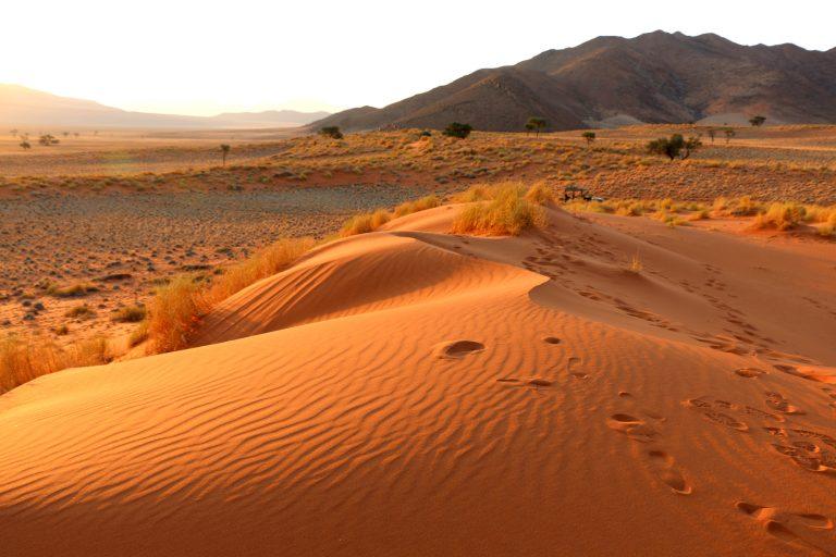 Wolwedans Wüste