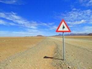 Namibia Landschaft mit Springbock Straßenschild