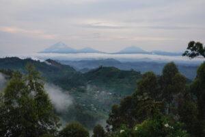 Uganda Virungas Blick vom Nkuringo
