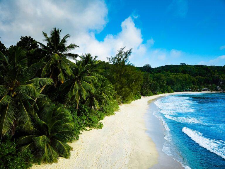 Seychellen langer Strand mit Palmen